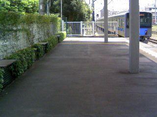 オススメの散歩・散策コース!